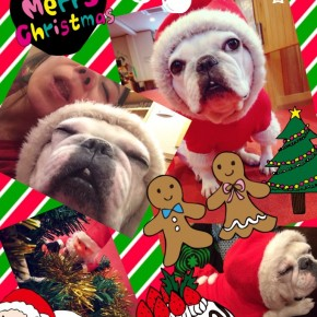 ★HAPPY MERRY CHRISTMAS★